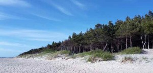 sandy-beaches-baltics